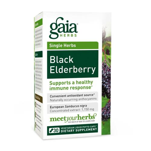 Black Elderberry